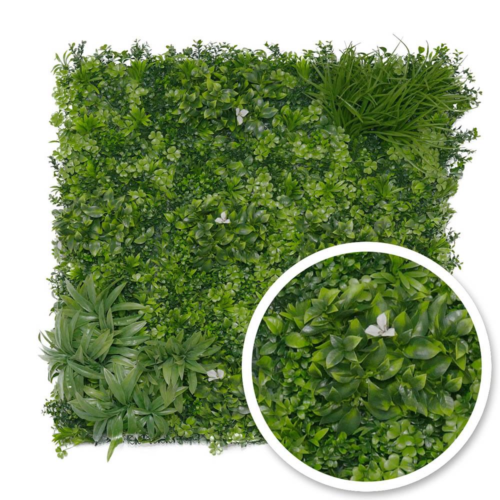 Le mur végétal, un brise-vue original et pratique